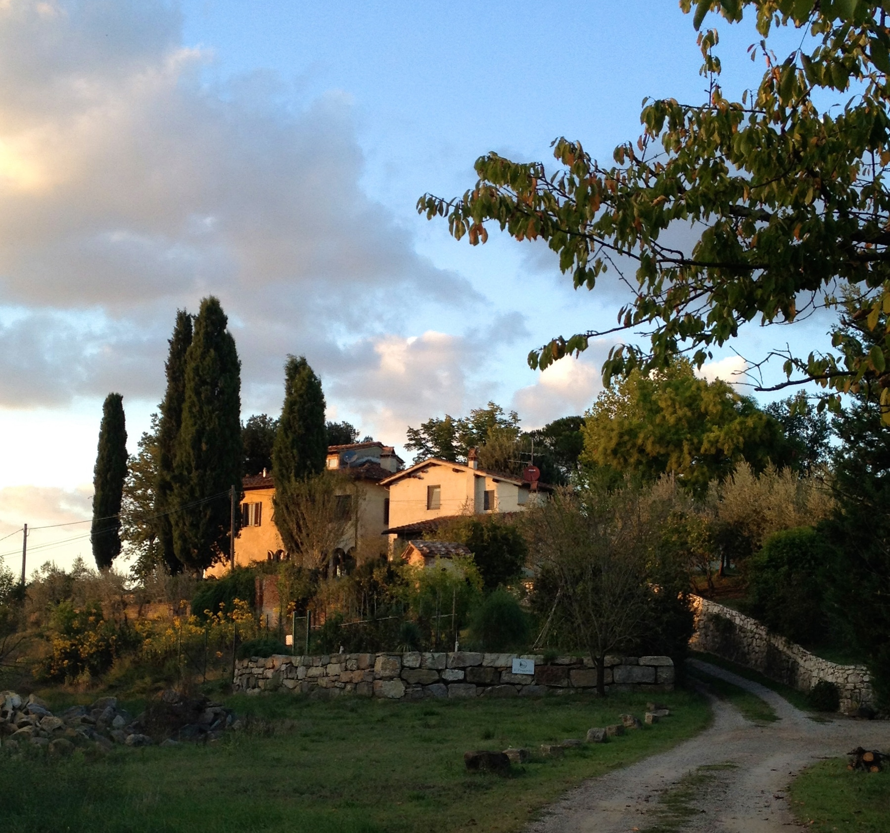 Evening walks are delightful, the light seems unique to Tuscany